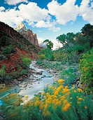 Virgin River, Zion Canyon National Park, Utah, Usa