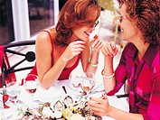 Two Women Talking over a Meal