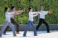 Four Business Colleagues Doing Tai Chi By a Garden Hedge
