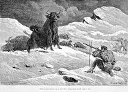 Hunting yaks, drawing by &#201;mile Bayard. Engraving from 'Le tour du monde'