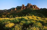 Siliceous rock formations. Serra Calderona Natural Park. Valencia province, Spain