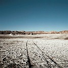 Tyre tracks through a barren landscape (thumbnail)