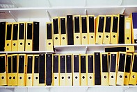 Shelves of lever arch files (thumbnail)