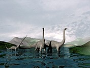 Sauropod dinosaurs.  Computer artwork of a  family group  of  sauropod dinosaurs.  The sauropods were large herbivorous dinosaurs.  Fossils  of  vario...