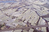 Greenhouses. Aerial photograph of greenhouses used to  grow  fruits  and vegetables.  Greenhouses are used to grow crops as they protect  from  moistu...