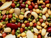Collection of pulses, these are the edible seeds of leguminous plants, such as peas, beans, and lentils.