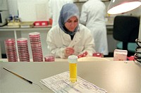 Urine sample testing. Urine sample on  a bench in a hospital microbiology laboratory. The  request  form  gives  details  of  the  tests required  by ...