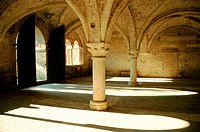 'Scriptorium', remains of the Gothic Abbey of San Galgano. Tuscany. Italy