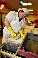 Fish preparation. Worker gutting fresh fish at a fish processing plant.