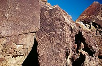 Petroglyphs. Eastern Sierras. California. USA