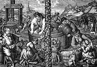 Landwirtschaft hist.- Wein,  Weinbau in Landshut, Ernte, Füllen der  Trauben in Fässer, Verkosten von Wein, Reproduktion des Stiches von Amling, 17. J...