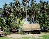 Geografie, Salomonen, Insel Guadalcanal, Landschaft, Eingeborenendorf an der  Westküste,  hütte dorf palme solomon