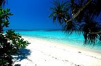 Beach at Lankayan Island, off Sandakan, Malaysia