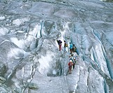 10268089, Aletsch glacier, glacier, Switzerland tour, anseilen, Belalp, Riederalp, glacier fissures, group, high alpine walkin