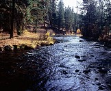 North Fork Malheur River. Malheur National Forest. Oregon, USA