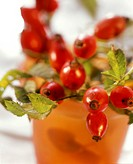 Rose hip twigs in a beaker