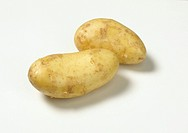Two potatoes on white background