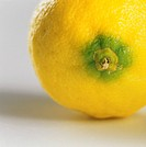 Lemon (detail of stalk end)