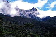 Mt. Kinabalu, 4100 meters, Sabah, Malaysia