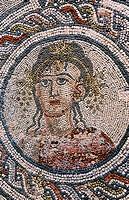 Mosaic. Volubilis. Morocco