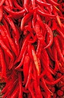 Large Group of Red Chillis, Sorrento, Campania, Italy