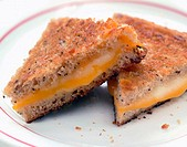 Munster, American and mild Cheddar cheese on seven grain bread slow cooked to perfection