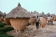 Grain storage huts. Villagers standing by grain storage huts. Cereal crops are harvested for their grains, which can be used to make flour for bread a...