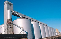 Train at grain silo