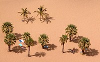 Playa de las Teresitas. Santa Cruz de Tenerife. Tenerife. Canary Islands.