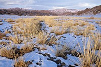 Altai mountains in winter. Mongolia