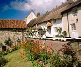 Longview cottage B&B in Branscombe village. Devon, England, UK