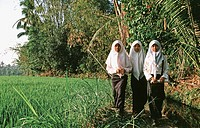 Young muslim girls on the way to school. Java, Indonesia