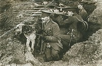 A line of rifelmen aim over an earth wall while an officer holds a dog on a chain