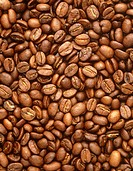 Roasted coffee beans. Any of the seeds from several species of shrubs of the genus Coffea are used to make coffee. The drink is made with beans which ...