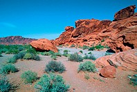 Nevada desert. The Valley of Fire. Nevada. USA