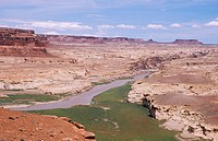 Colorado river near Hite crossing. Glen Canyon National Recreation Area. Utah. USA
