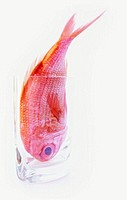 Red snapper fish head first in a glass vase head first