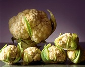 A few small and one large cauliflower