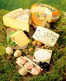 French cheeses on forest floor
