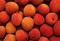 Litchis (Litchi chinensis), the edible fruit of a tree of the soapberry family.