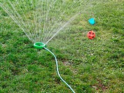 Sprinkler, ball and pail, Windsor, Ontario, Canada