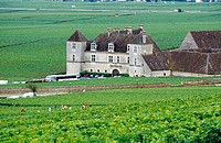 Clos Vougeot castle within the vineyards. Cote d´or. Burgundy. France