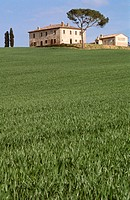 Tuscany landscape near Montepulciano. Italy