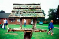 Birdtable in field