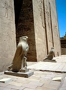 Statues of Horus, Ancient Egyptian god, at the temple dedicated to him at Edfu, Egypt. Horus was most often represented as a falcon. Each statue is ov...