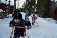 Sleighing  Sweden