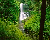 Silver Falls. Middle North. Oregon. USA