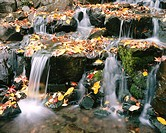 Fall colours, Waterfall