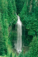 Waterfall Mount Rainier. USA