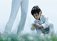 Little boy squatting down on grass looking at flower, next to woman´s legs